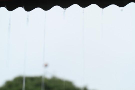 トタンから落ちる雨