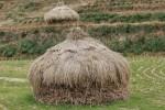 積み上げられた稲藁