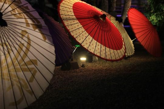 ライトアップされた傘