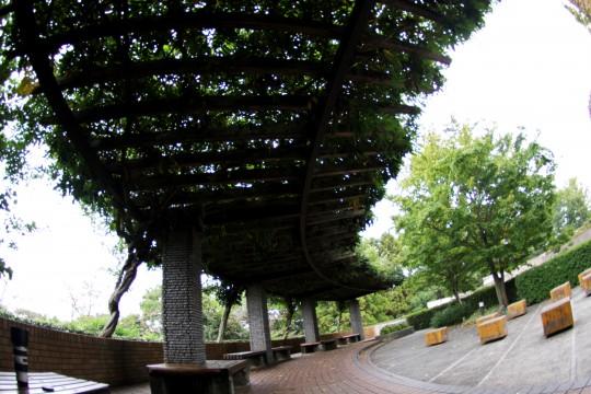 葉っぱの屋根とベンチ