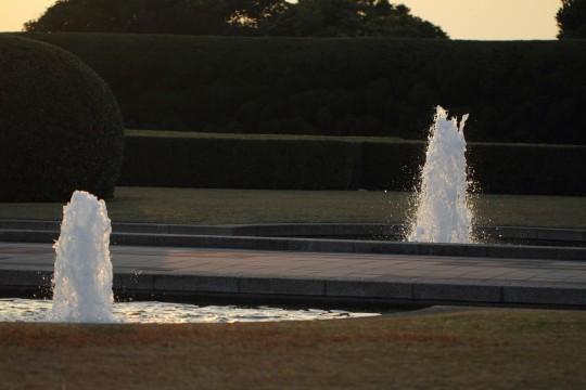 夕日に照らされた噴水