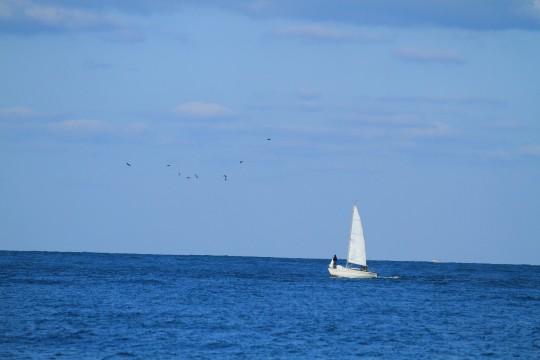 海上のヨット