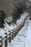 雪の積もった階段