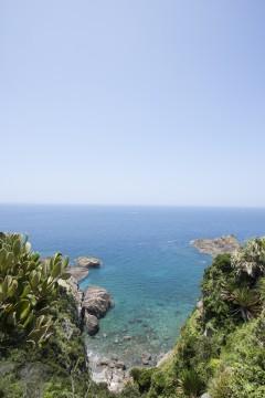 南国の透き通った海