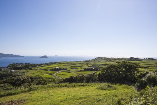 平戸の棚田と海2