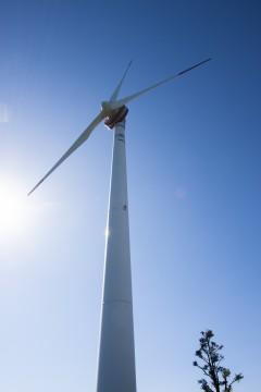 そびえ立つ風力発電機