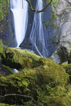 苔むした岩と母滝