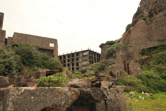緑に覆われた廃墟