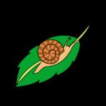カタツムリ