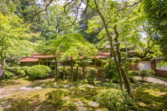 新緑あふれる庭園