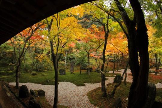 秋の日本庭園2