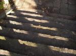 影が落ちる公園の階段