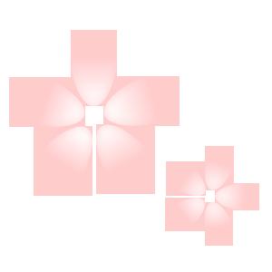 さくらの花1
