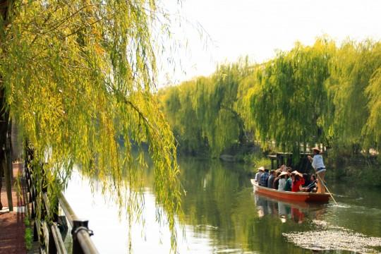 柳川の川下りの光景