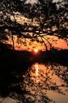 福岡城跡からの落日