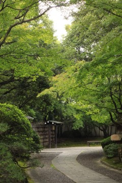 午前中の日本庭園いりぐち