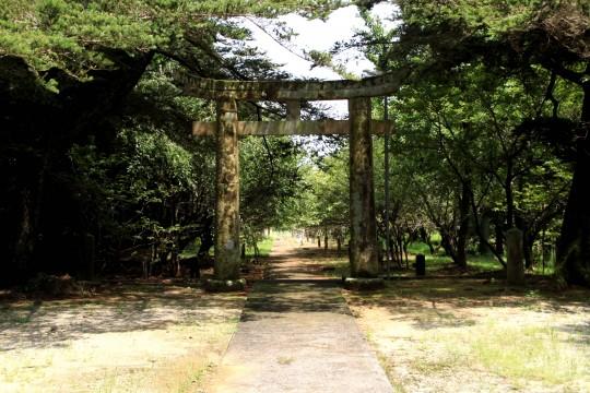 山の中の神社の鳥居