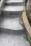 階段に残された人と動物のあしあと