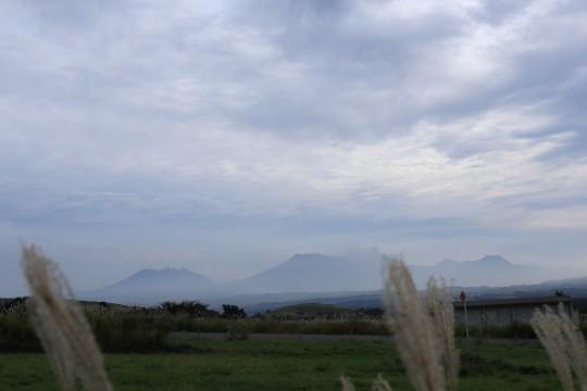 遠くに見える山々とススキ
