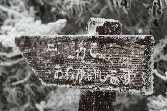 雪の中の案内板