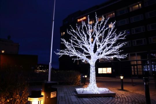 電飾で作られた木