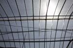 ビニールハウスの屋根