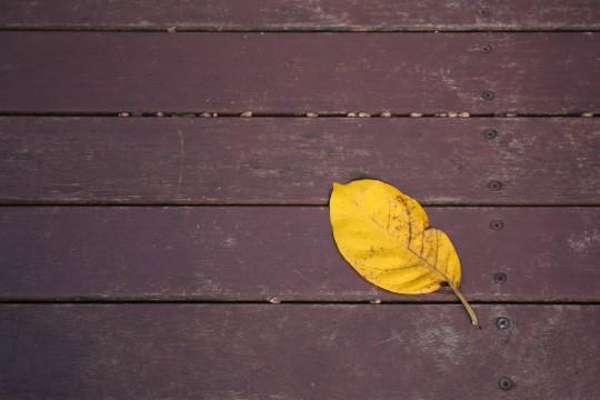 ウッドデッキに落ちた葉っぱ